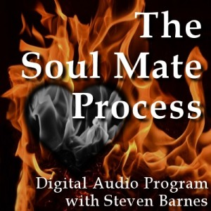 Steven Barnes - The Soul Mate Process